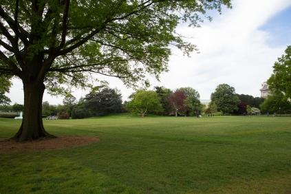 White House garden-10