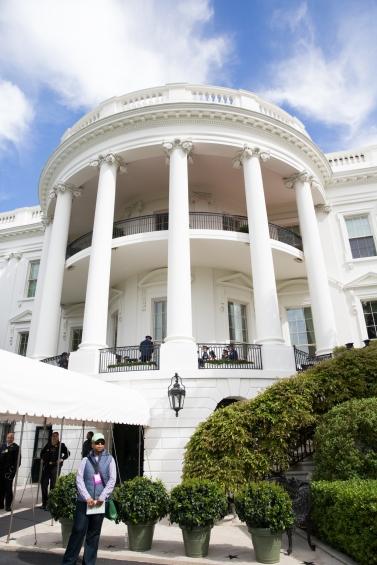 White House garden-13