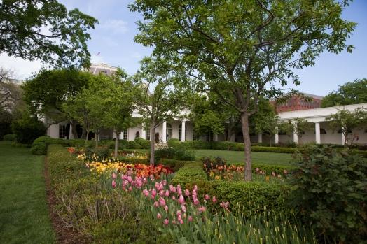 White House garden-29