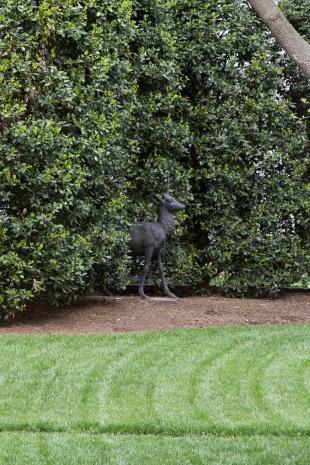 White House garden-33