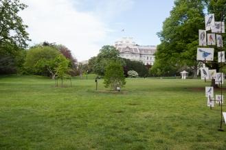 White House garden-4