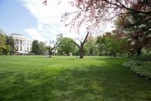 White House garden-43