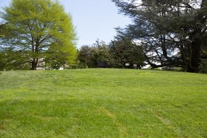 White House garden-45