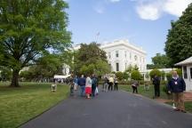 White House garden-5