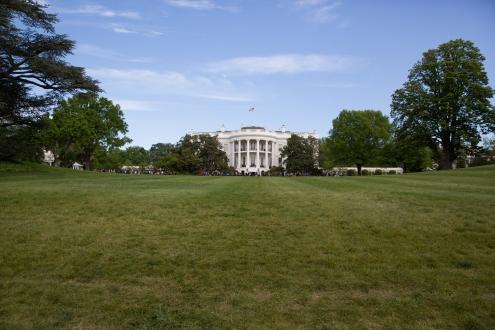 White House garden-54