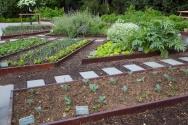 White House garden-63